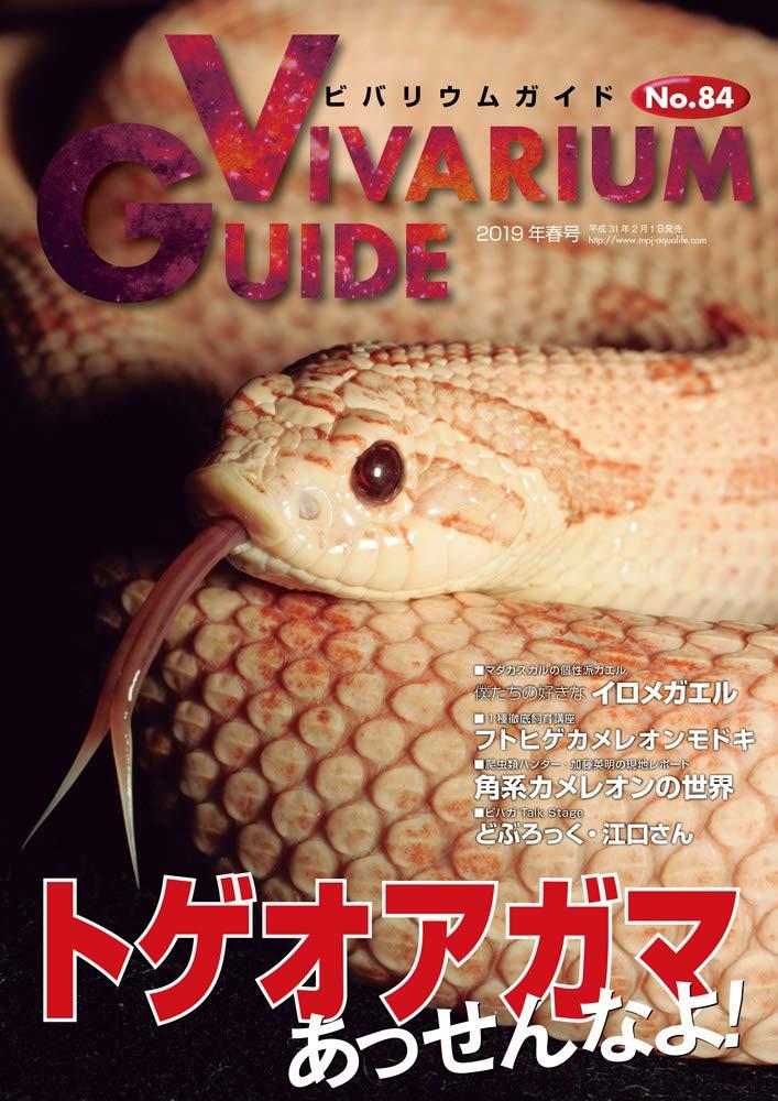 画像1: VIVARIUM GUIDE ビバリウムガイドVOL.84 (1)